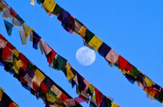 bandiere+tibetane